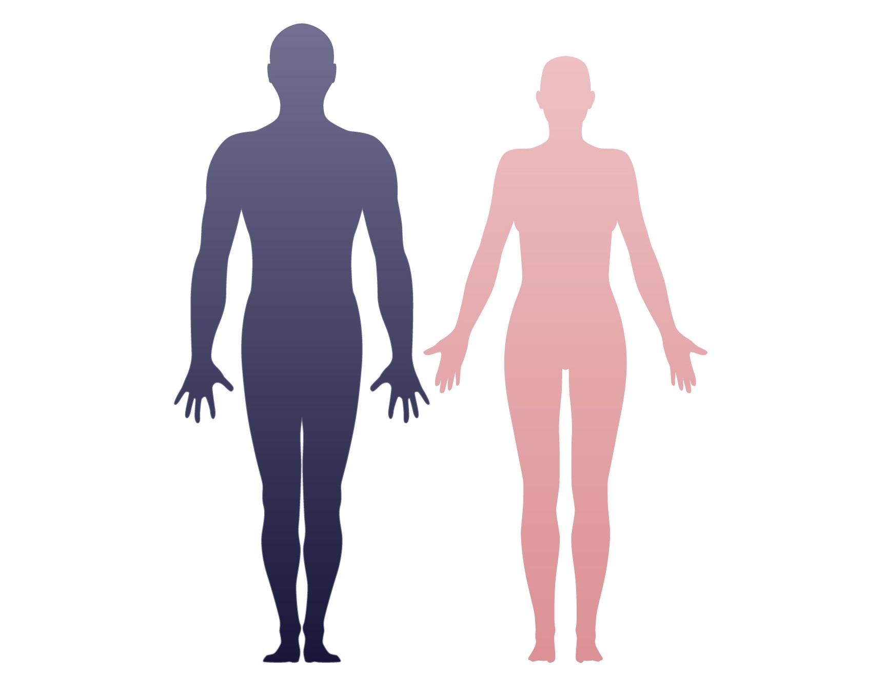 The unfashionable human body 65