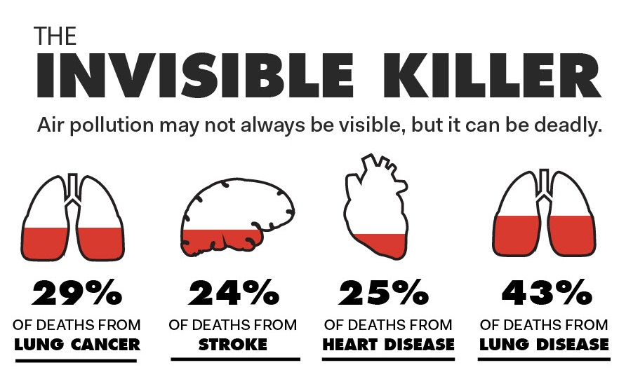 Air pollution and cardiovascular disease: a window of opportunity - World  Heart Federation
